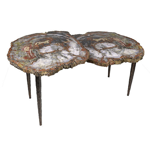 Arizona Petrified Wood Duo Slice Table With Forged Base