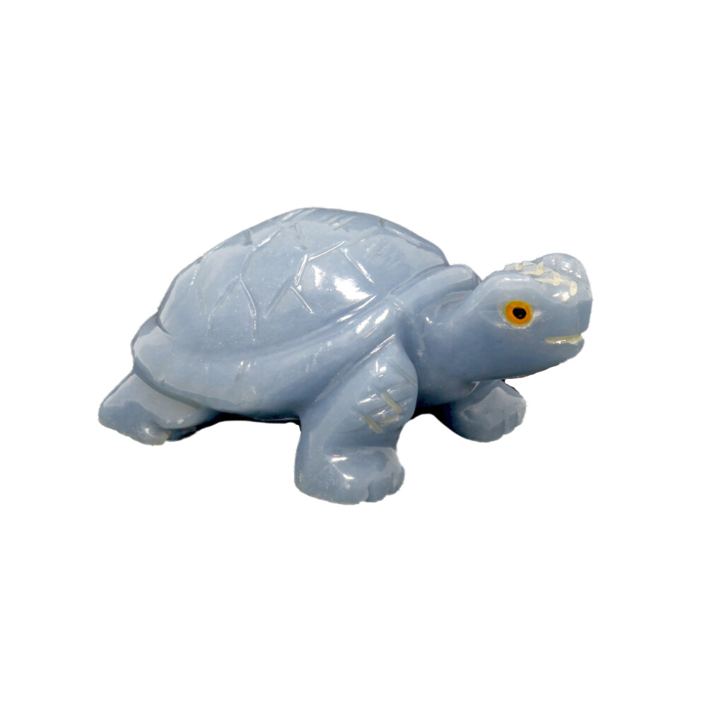 Angelite Hand-carved Tortoise