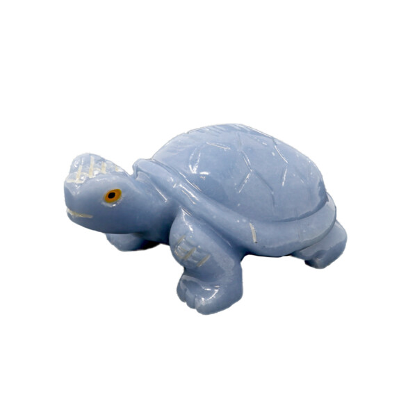 Closeup photo of Angelite Hand-carved Tortoise
