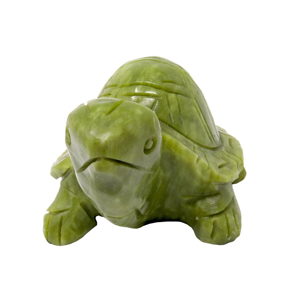 """Jade Turtle 6"""" L"""