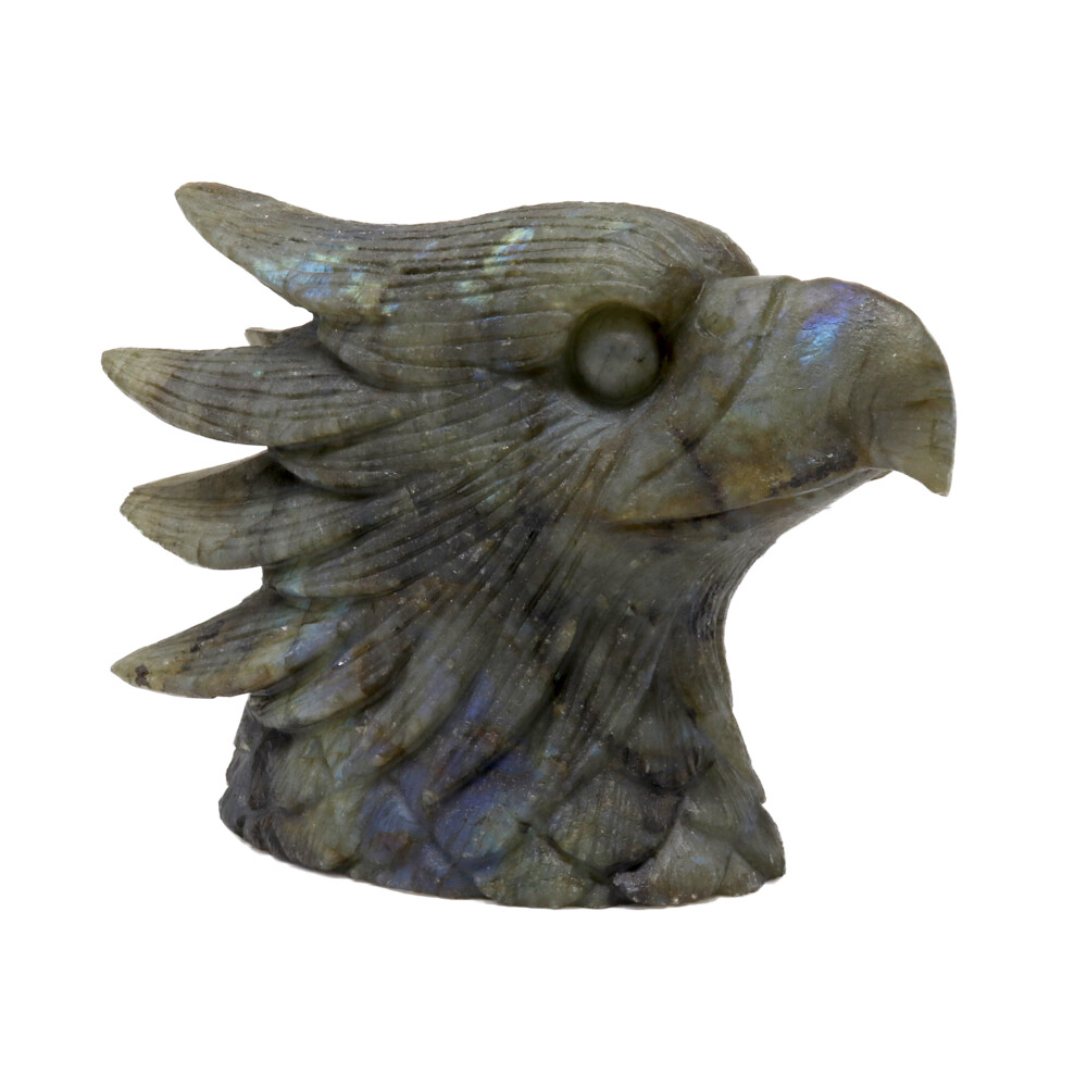 Labradorite Eagle Head Carving