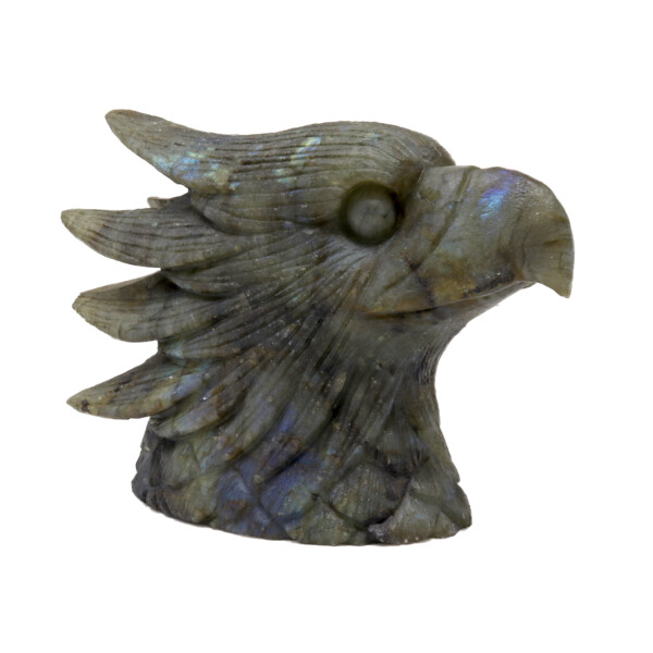 Closeup photo of Labradorite Eagle Head Carving