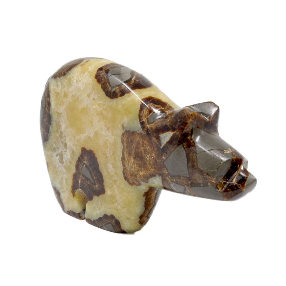 Septarian Zuni Bear With Druze Pocket From Utah