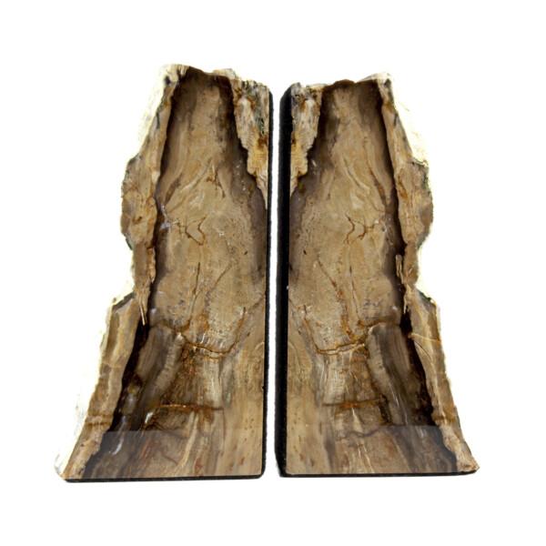 Closeup photo of Saddle Mountain Washington Petrified Wood Bookends -Sequoia