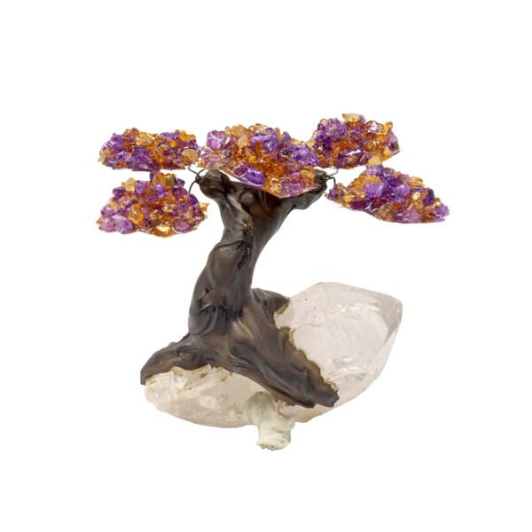 Closeup photo of Ametrine Gemstone Tree With Quartz Base
