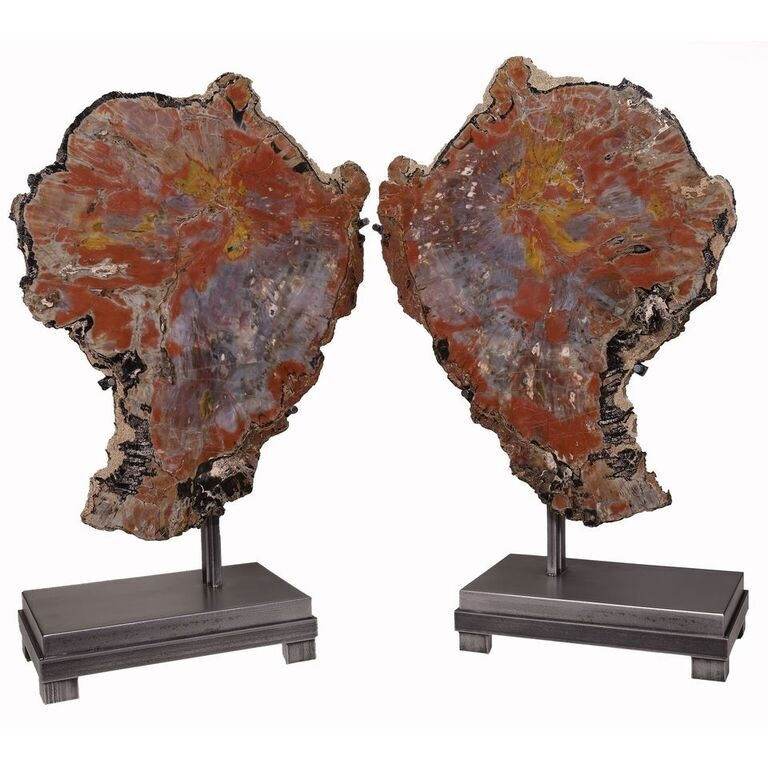 Arizona Petrified Wood Wing Pair On Separate Custom Stands