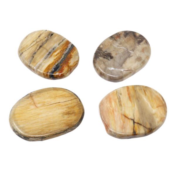 Closeup photo of Madagascar Petrified Wood Flat Stone (Singles)