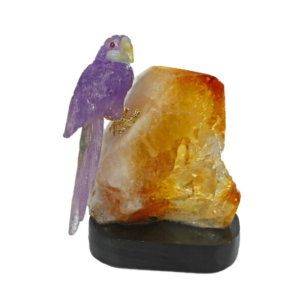 Closeup photo of Amethyst Macaw on Citrine Point