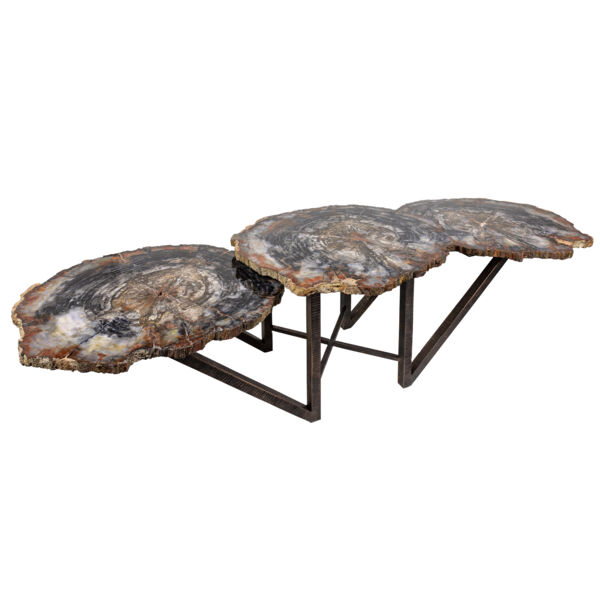 Closeup photo of Arizona Petrified Wood Trio Slice Coffee Table With Hand Forged Base