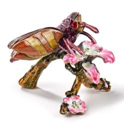 Closeup photo of Dragonfly Jewel Box