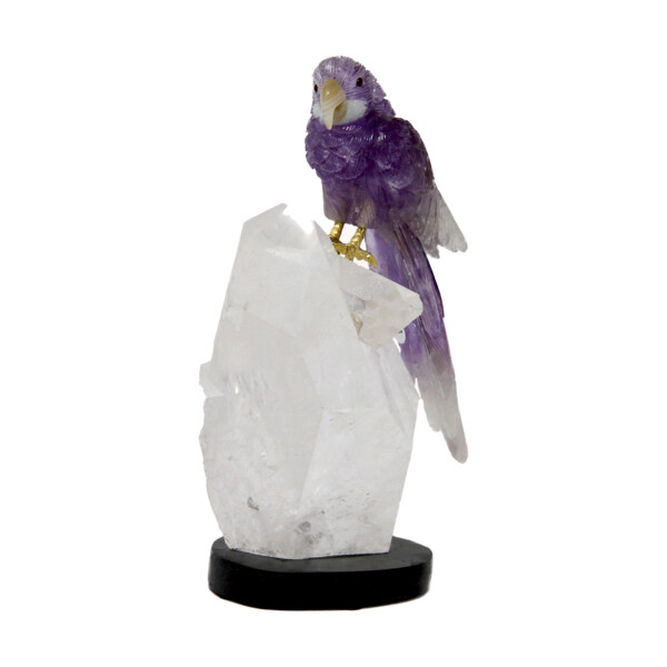 Closeup photo of Amethyst Macaw On Quartz Point Cluster