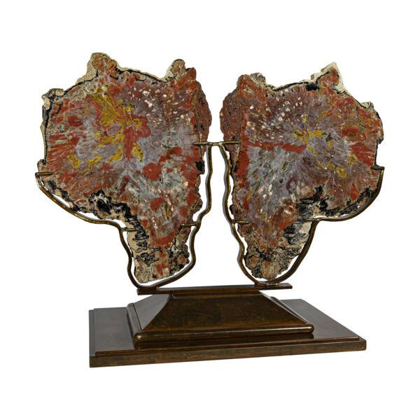 Closeup photo of Arizona Petrified Wood Polished Pair On Custom Stand