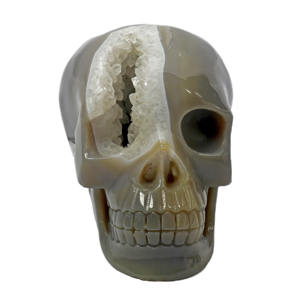 Image 2 for Agate Geode Skull Carving With Druze