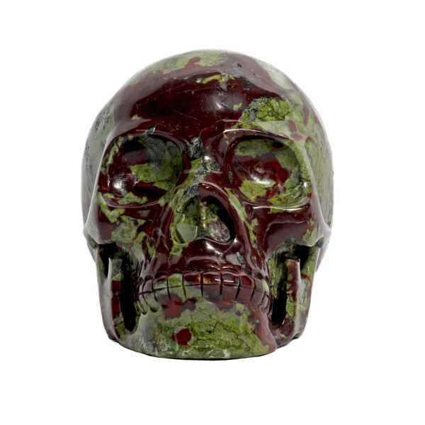 Closeup photo of Dragon Bloodstone Skull