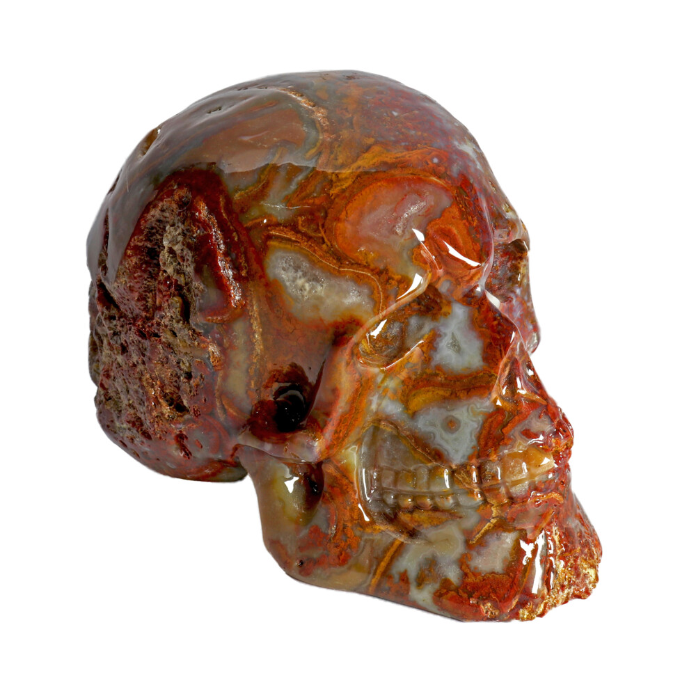 Crazy Lace Agate Skull Small