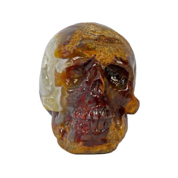Closeup photo of Crazy Lace Agate Skull Medium
