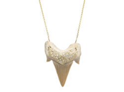 Closeup image for View Shark Tooth Necklace -  By Samira 13