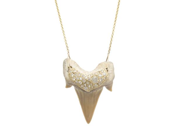 Shark Tooth Necklace - alternate