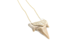 Alternate image 2 for Shark Tooth Necklace By Samira 13