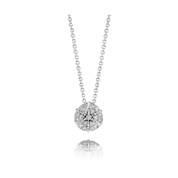 Closeup photo of White Gold Amarcord Necklace
