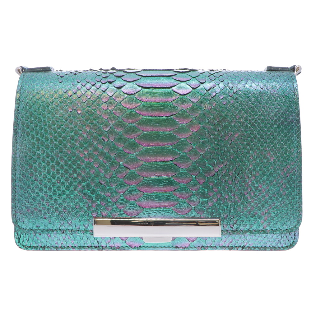Ombre Purple & Green Python Chain Bag