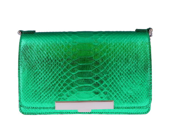 Closeup photo of Emerald Green Python Chain Bag
