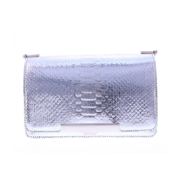 Closeup photo of Silver Python Chain Bag